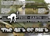 The Art of Dirt - ITALIANO